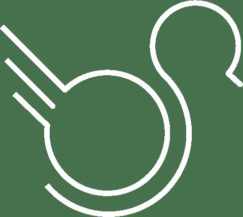 w duck